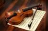 Violini Viole Celli Contrabassi